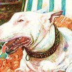 The faithful dog Bengy